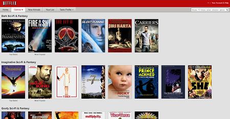 Netflix Browsing System