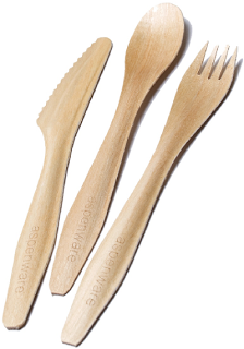Aspenware Disposable Cutlery