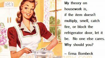 My theory on housework…