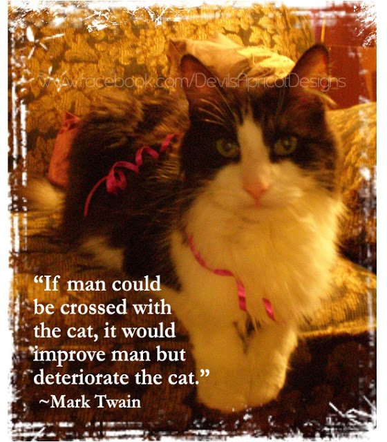 If man could be crossed with the cat, it would improve man but deteriorate the cat.