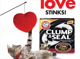 Show Your Cat They're Loved, On Valentine's Day & Every Day!