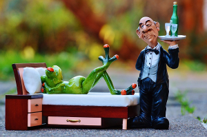 Silly butler with tree frog.