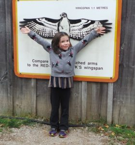 Five year old girl compares her arm span to a hawk's wingspan.