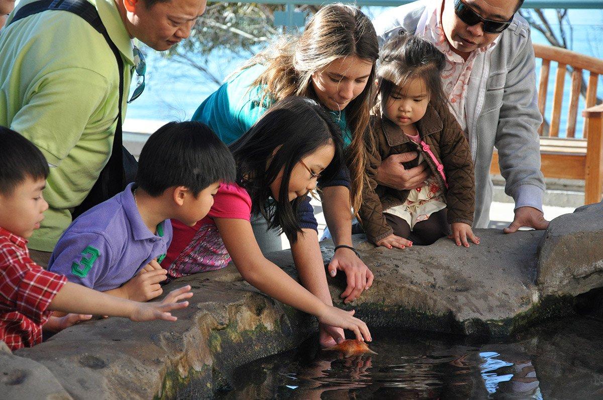 Birch Aquarium tidepools -Courtesy Birch Aquarium